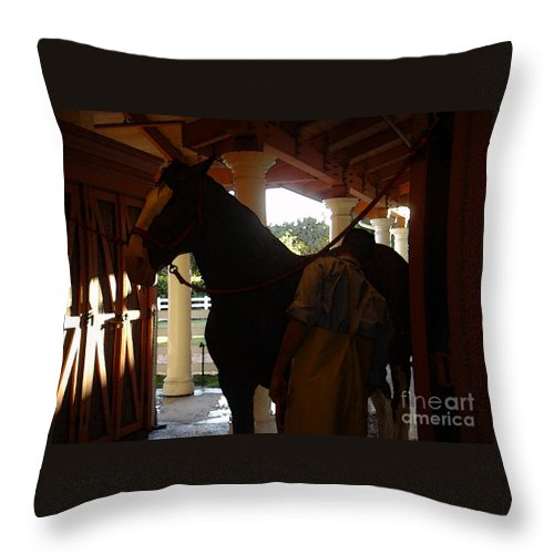 Horses Throw Pillow featuring the photograph Stable Groom - 2 by Linda Shafer