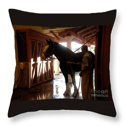 Horse Throw Pillow featuring the photograph Stable Groom - 1 by Linda Shafer