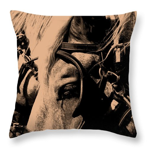 Horse Throw Pillow featuring the photograph Stage Coach Horses by Wayne Potrafka