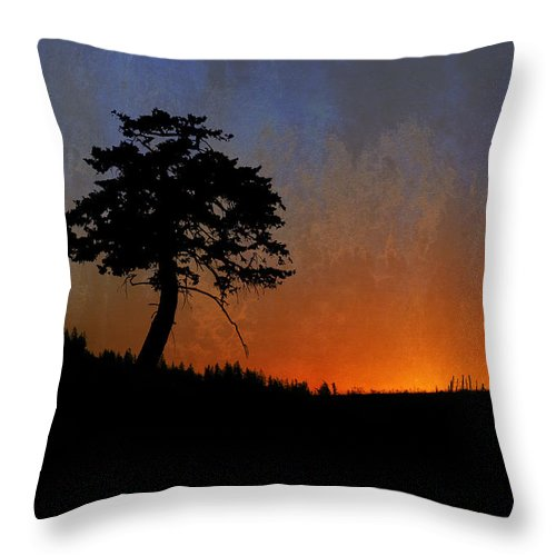 Sunrise Throw Pillow featuring the photograph Star Bright by Ed Hall