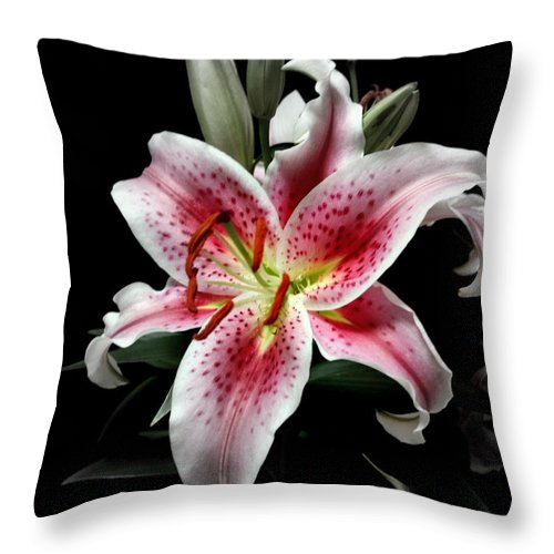 Flower Throw Pillow featuring the photograph Stargazer On Black 11x14 by Randall Thomas Stone