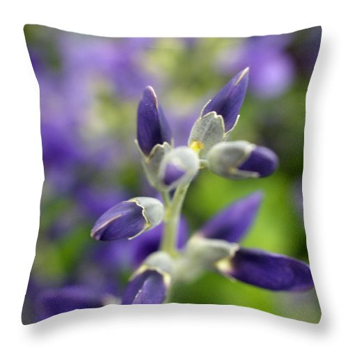 False Indigo Throw Pillow featuring the photograph Starlite II by Valerie Fuqua