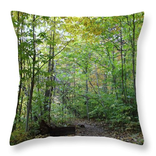Starved Rock Throw Pillow featuring the photograph Starved Rock Number 24 by Anna Villarreal Garbis
