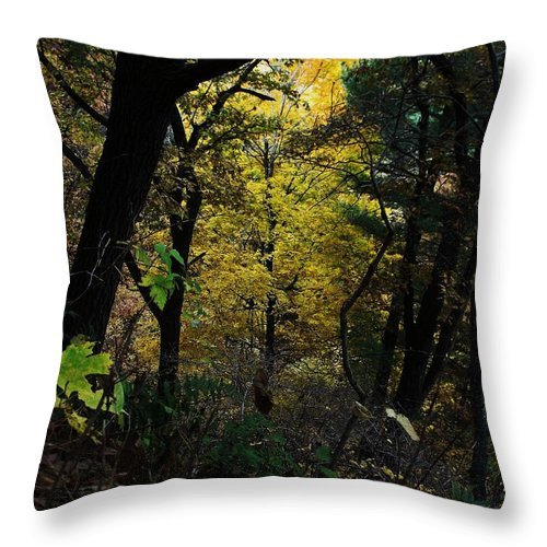 Fall Foliage Throw Pillow featuring the photograph Starved Rock Number 33 by Anna Villarreal Garbis
