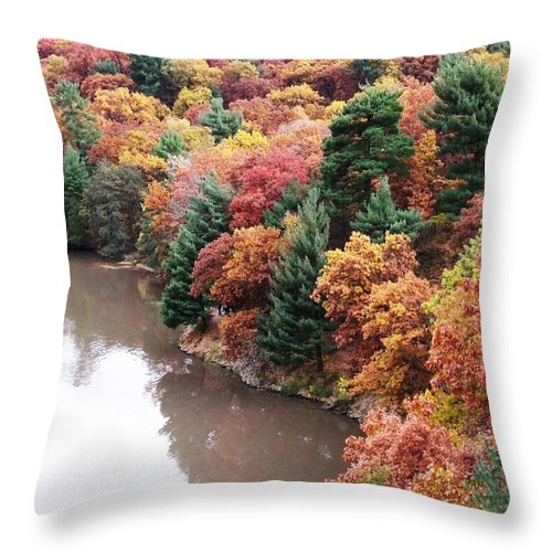 Starved Rock Throw Pillow featuring the photograph Starved Rock Number 444 by Anna Villarreal Garbis