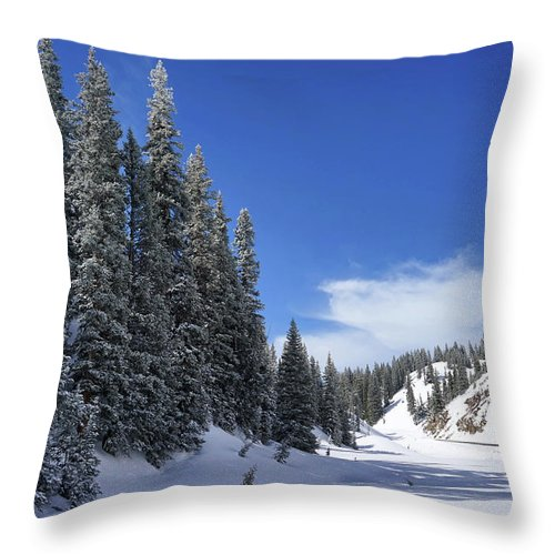 Colorado Throw Pillow featuring the photograph Stately Pines by Leda Robertson