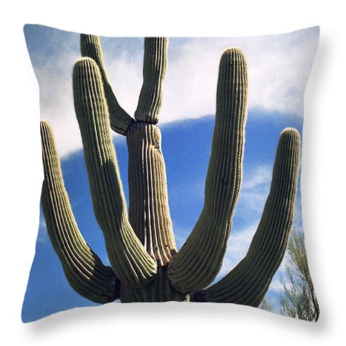 Cactus Throw Pillow featuring the photograph Stately Saguaro by Suzanne Gaff