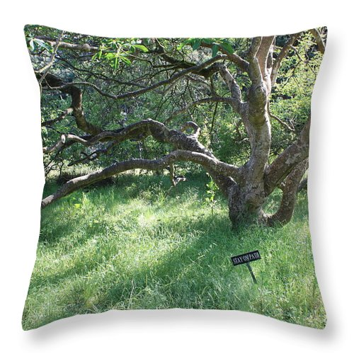 Tree Throw Pillow featuring the photograph Stay On Path by Carol Groenen
