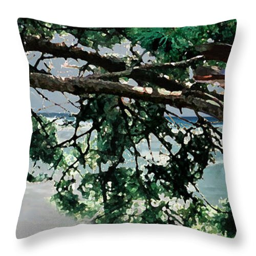 Landscape Throw Pillow featuring the painting Stealth by Steve Karol