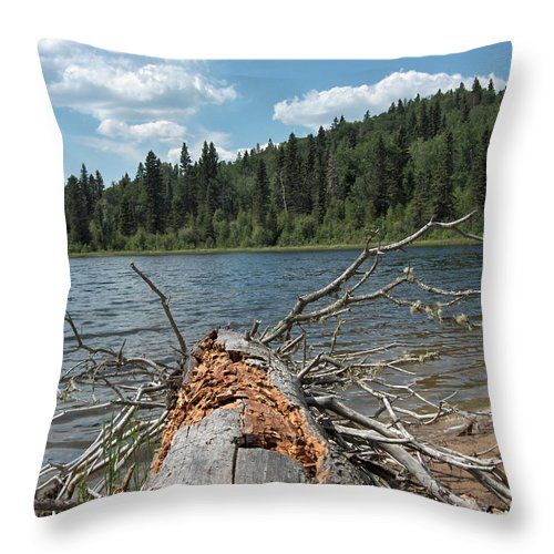 Water Lake Scenery Trees Wood Forest Driftwood Branches Shore Beach Throw Pillow featuring the photograph Steepbanks Lake The Fallen by Andrea Lawrence