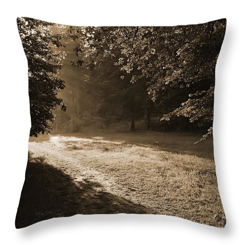 Light Throw Pillow featuring the photograph Step Out Of The Shadow by Daniel Csoka