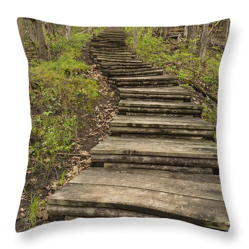 Steps Throw Pillow featuring the photograph Step Trail In Woods 17 A by John Brueske