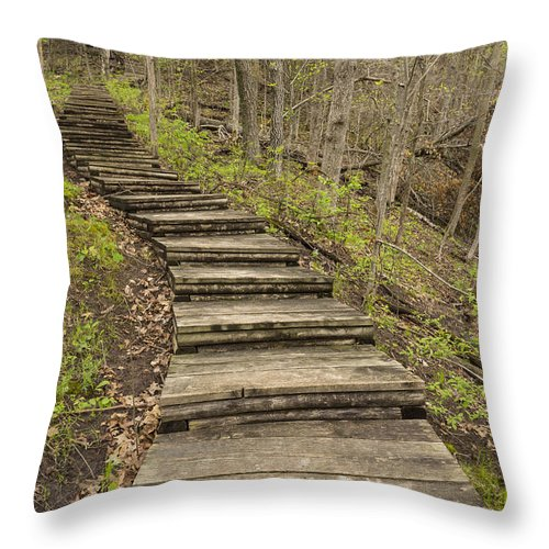 Steps Throw Pillow featuring the photograph Step Trail In Woods 17 B by John Brueske