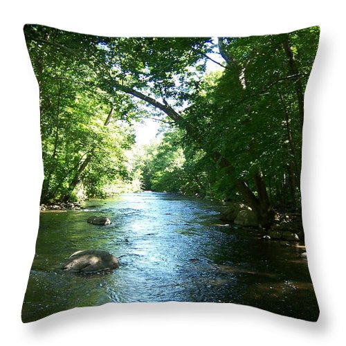 River Throw Pillow featuring the photograph Stephens State Park by Laurie Paci