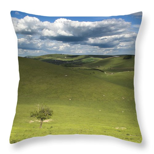 Steyning Throw Pillow featuring the photograph Steyning Bowl by Hazy Apple
