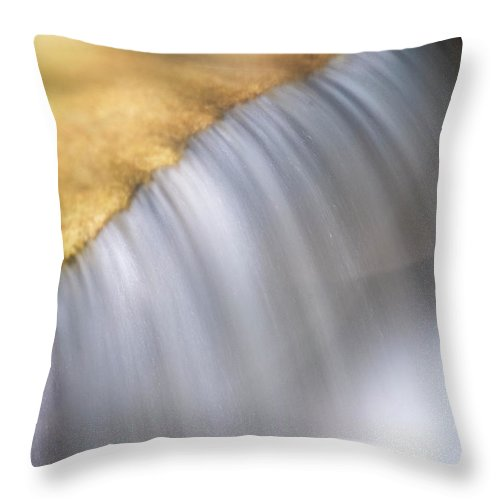 Stickney Brook Throw Pillow featuring the photograph Stickney Brook In Spring by Tom Singleton