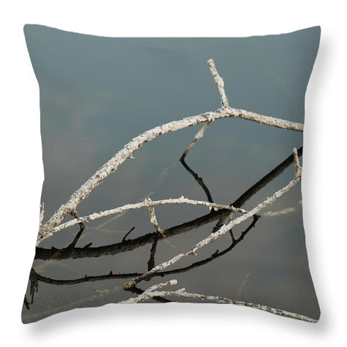 Blue Throw Pillow featuring the photograph Sticks In The Water by Rob Hans
