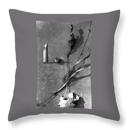 Still Life Throw Pillow featuring the photograph Still Forms by Ted M Tubbs