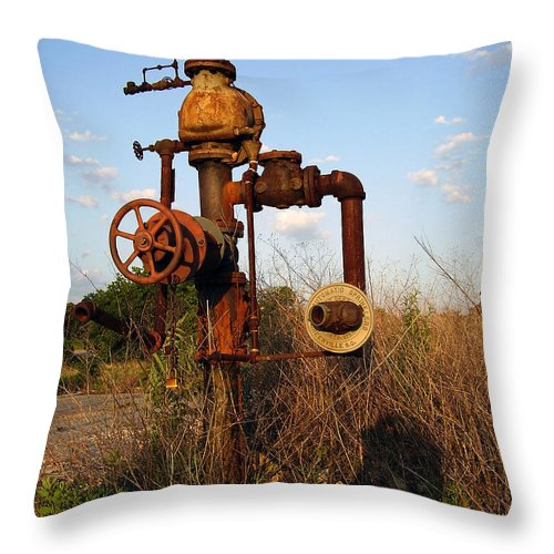 Pipes Throw Pillow featuring the photograph Still Here by Flavia Westerwelle