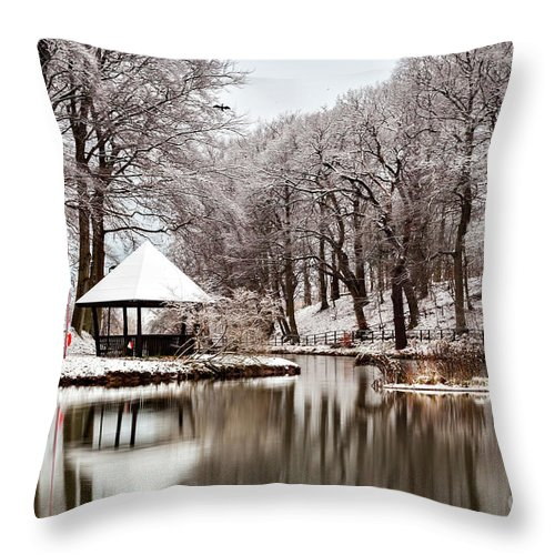 Helsingborg Throw Pillow featuring the photograph Still Lake In Winter by Sophie McAulay