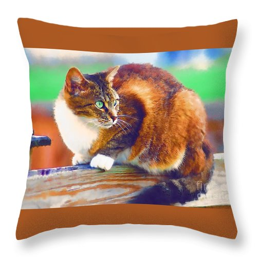 Cat Throw Pillow featuring the photograph Still On The Fence by Donna Bentley