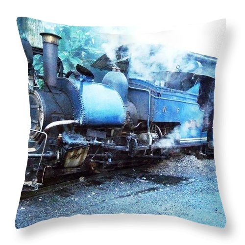 Photography Throw Pillow featuring the photograph Still Strong by Piety Dsilva