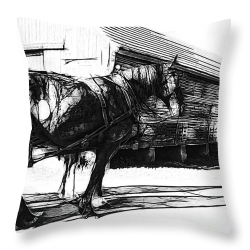 Alicegipsonphotographs Throw Pillow featuring the photograph Still Waiting by Alice Gipson