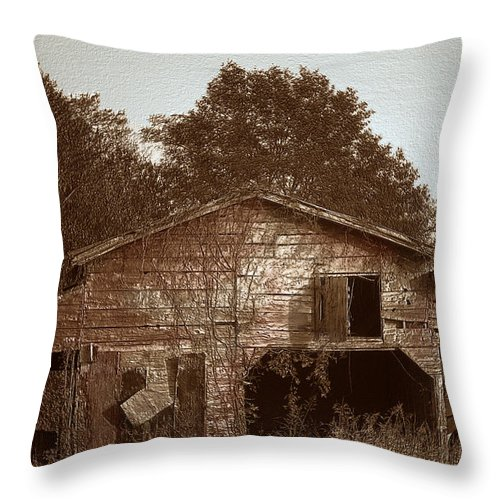 Barn Throw Pillow featuring the photograph Still Working by Amanda Barcon