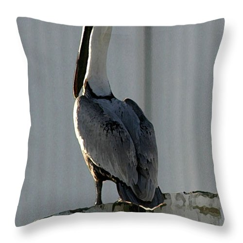 Pelican Throw Pillow featuring the photograph Stoic Pelical by Mary Haber