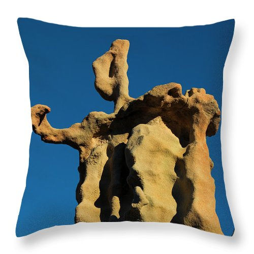 Siltstone Throw Pillow featuring the photograph Stone Bot by Mike Dawson