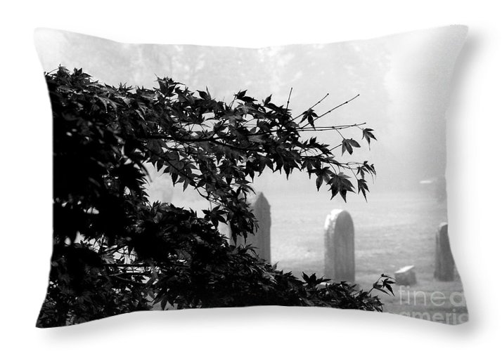 Stone Cold Fog Throw Pillow featuring the photograph Stone Cold Fog by Steven Macanka