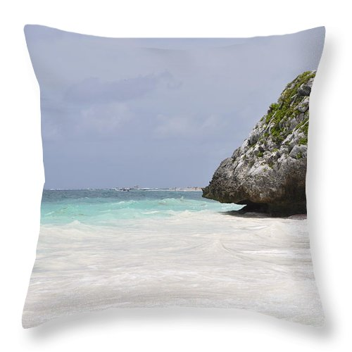 Landscape Throw Pillow featuring the photograph Stone Turtle by Glenn Gordon