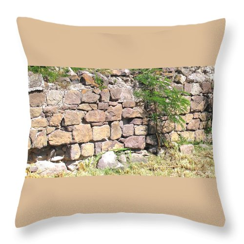 Stone Wall Throw Pillow featuring the photograph Stone Wall by Ian MacDonald