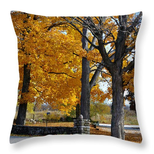 Stone Wall Throw Pillow featuring the photograph Stone Wall by Tim Nyberg