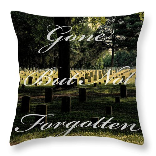 Stones River Throw Pillow featuring the photograph Stones River Battlefield by TnBackroadsPhotos