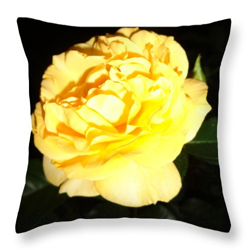 Abstract Throw Pillow featuring the photograph Stop and smell the Roses by J Andrel