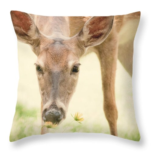 Throw Pillow featuring the photograph Stopping To Smell The Flowers by Sylvia Coomes