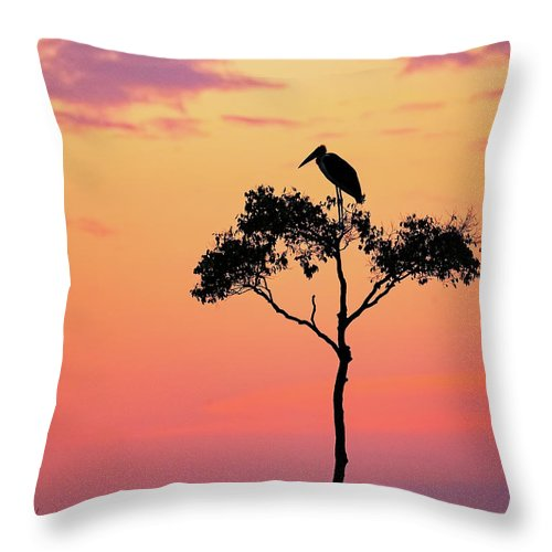 Stork Throw Pillow featuring the photograph Stork On Acacia Tree In Africa At Sunrise by Susan Schmitz