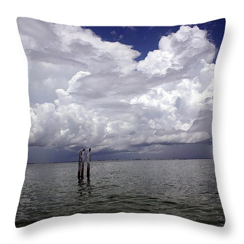 Storm Throw Pillow featuring the photograph Storm On The Horizon by Mary Haber