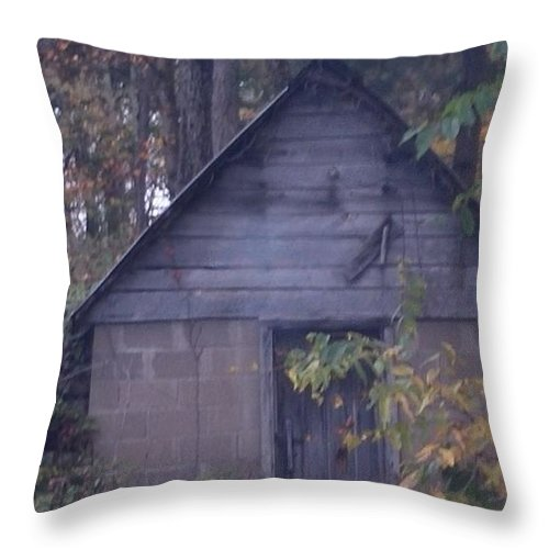 Landscape Throw Pillow featuring the photograph storm Shelter by Fayedra Oharra