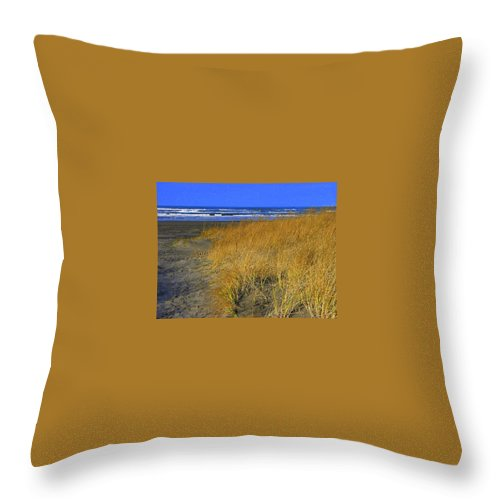 Long Beach Wa Throw Pillow featuring the photograph Stormy Walk On The Beach V Long Beach Washington by Jacqueline Russell