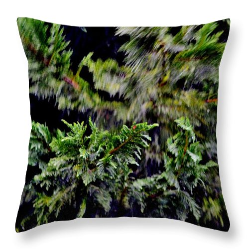 Trees Throw Pillow featuring the photograph Stormy Weather by Eileen Brymer