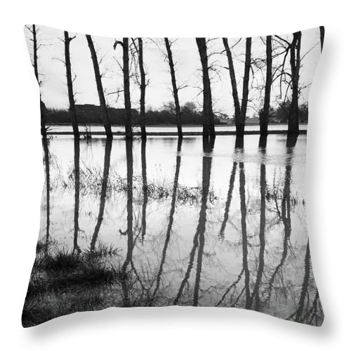 Stranded Throw Pillow featuring the photograph Stranded Trees II by Hazy Apple