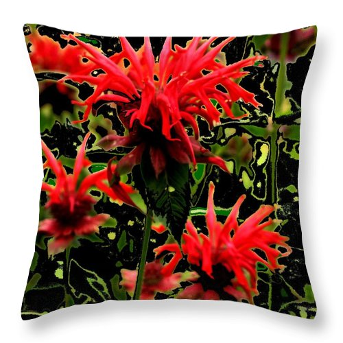 Abstract Throw Pillow featuring the photograph Strange Garden by Ian MacDonald