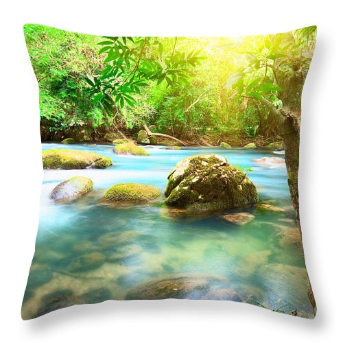 Branch Throw Pillow featuring the photograph Stream by MotHaiBaPhoto Prints