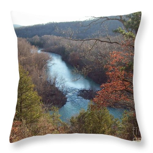 Landscape Throw Pillow featuring the photograph Streaming Along by Tanya Marley