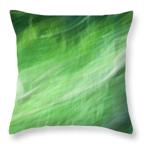 Streaming Throw Pillow featuring the photograph Streaming Life by Douglas Barnett