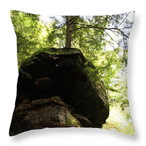 Tree Throw Pillow featuring the photograph Strength by Amanda Barcon