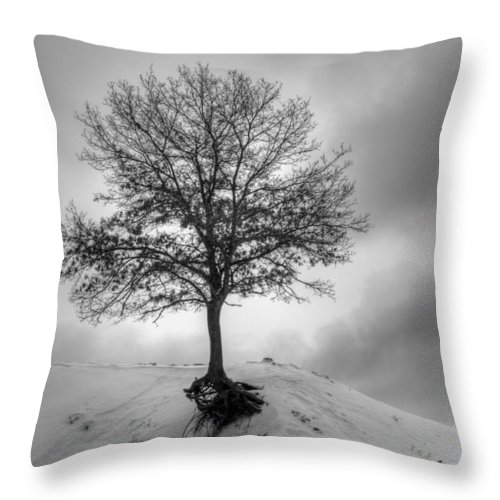 Tree Throw Pillow featuring the photograph Strength And Hope 2011 by Thomas Young