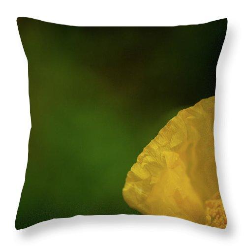 Photograph Throw Pillow featuring the photograph Stretch by Susan Schumann